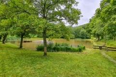 Rasen-mähen-am-Sandbacher-See-im-Juni-2020-13