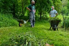 Pumpe-setzen-und-Rasen-maehen-Juni-2021-8