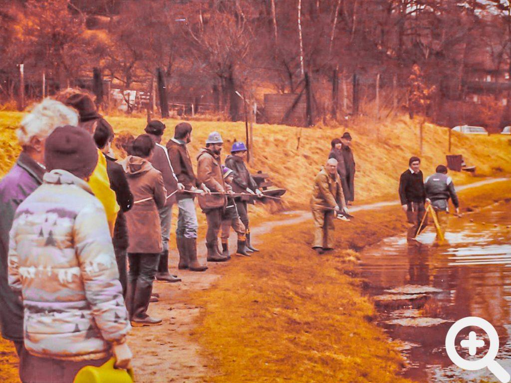 Netzzug mit vielen Helfern am 13.03.1982 am Sandbacher See vor dem Fischbesatz und Anangeln