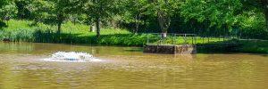 Sandbacher See im Sommer 2020