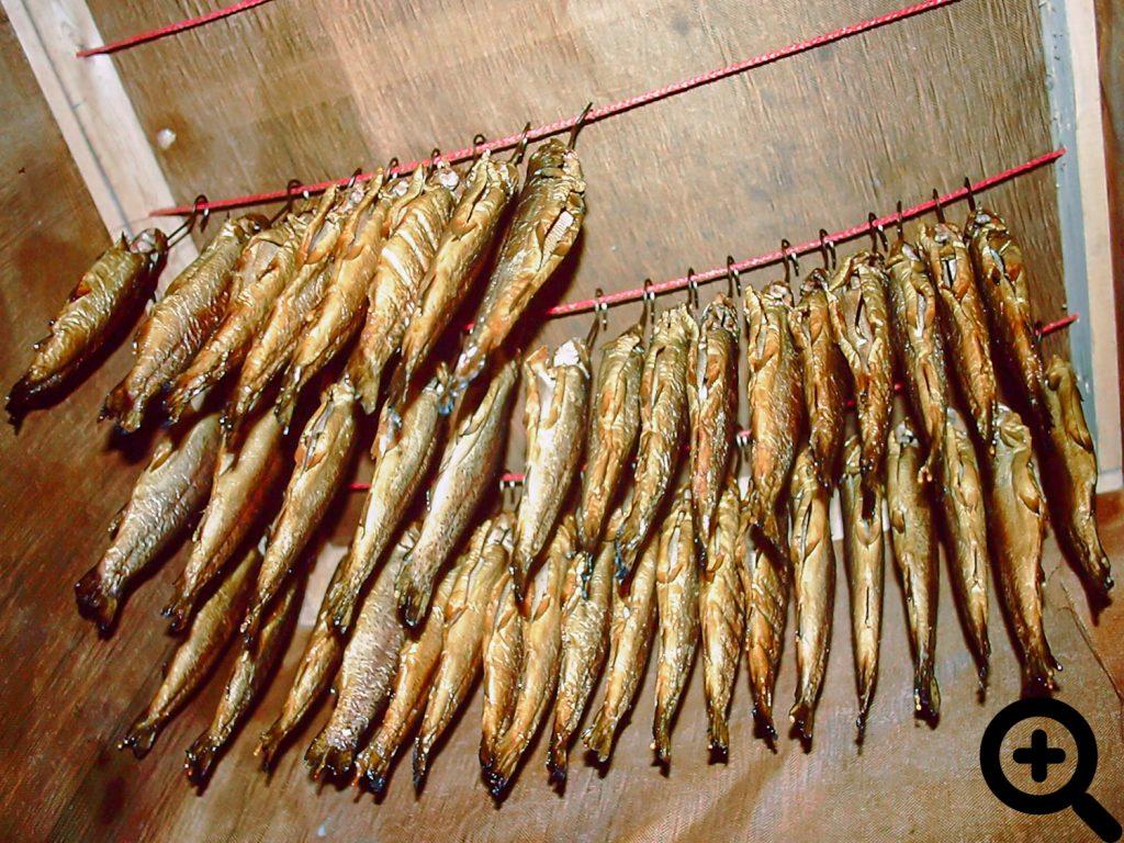 Für das Anglerfest 1997 wurden 80 Forellen zum Verkauf geräuchert.