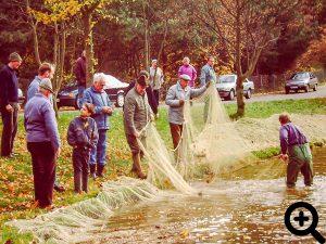 Vorbereitungen für den Netzzug am 04.11.1995 im Sandbacher See